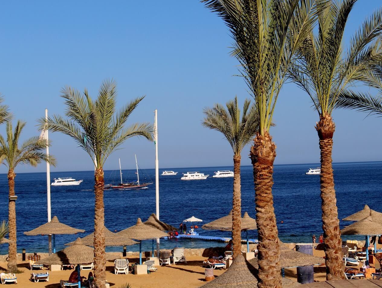 відпочинок в єгипті, тури в єгипет, горячі тури до єгипту