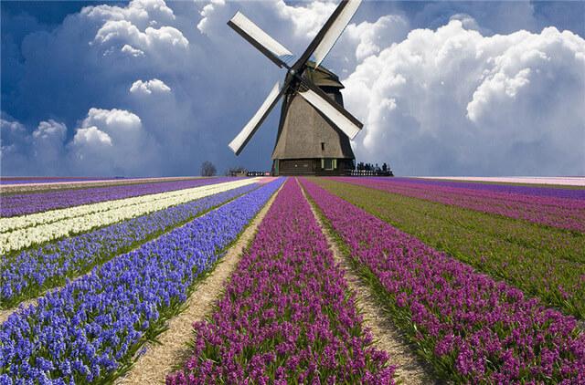 тури в голандію, поїхати в голандію, автобусні тури в голандію